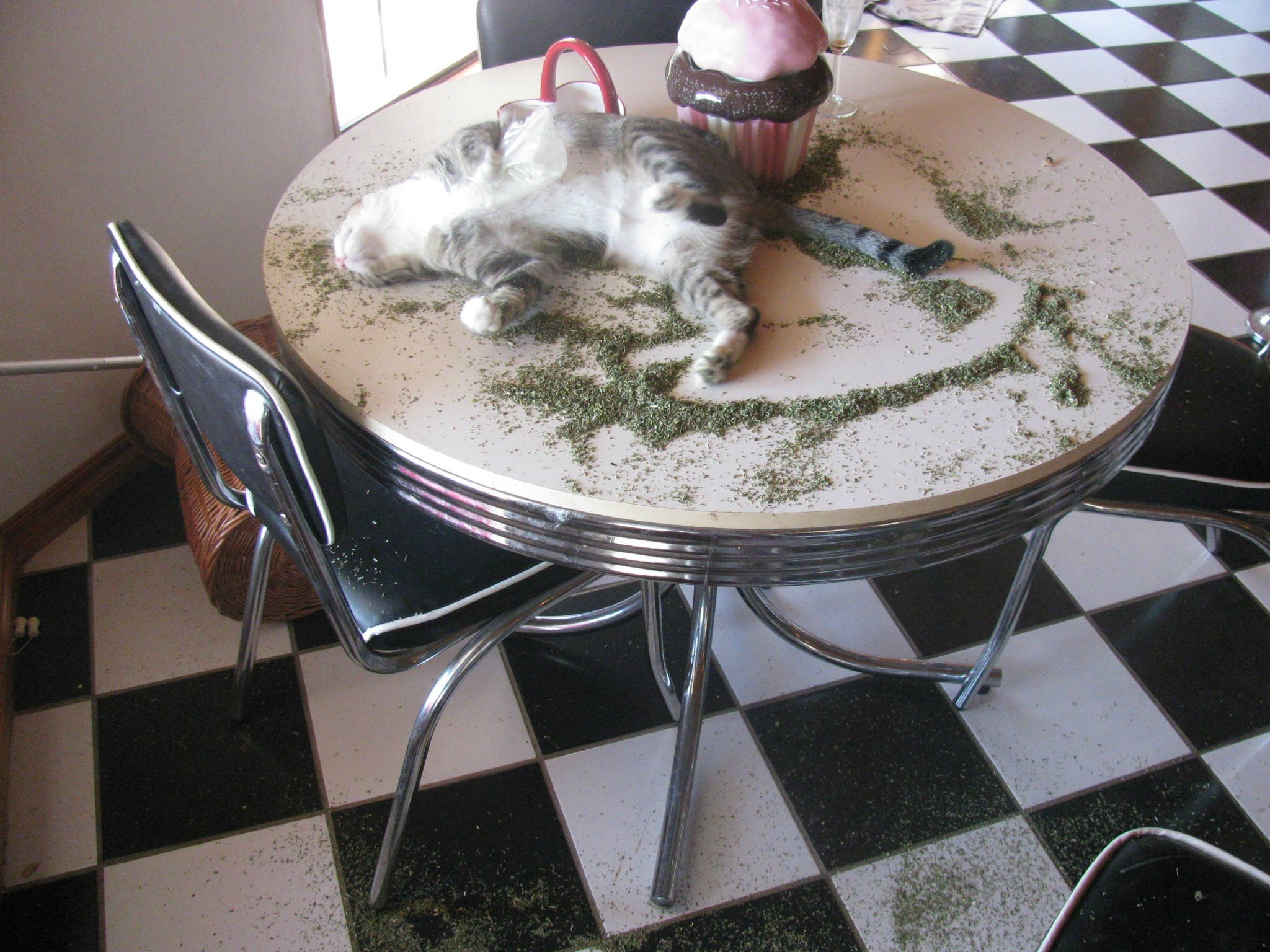 It is time you admit your catnip addiction :P