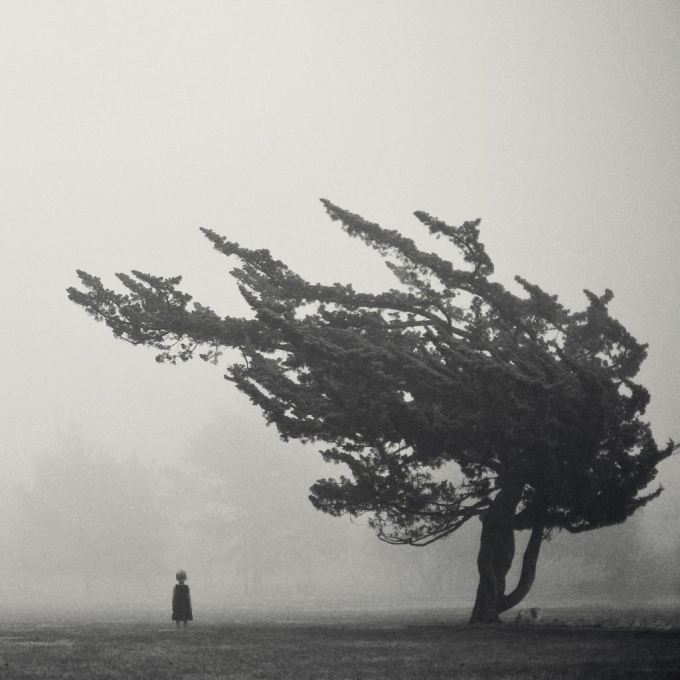 The little girl and the tree (°_°)