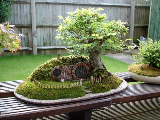 A Baggins bonsai (n_n)