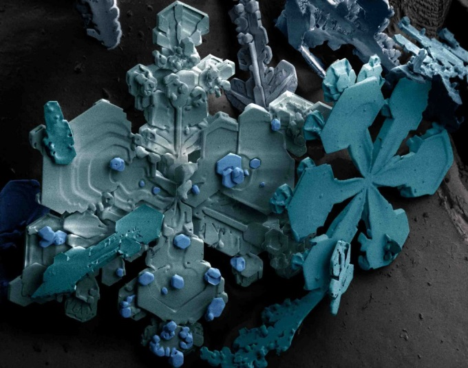 Snow, as seen through an electron microscope 0_o