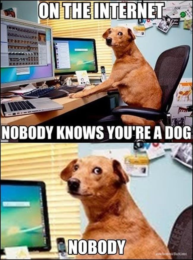 On the internet, nobody knows you're a dog... Nobody. (•_•)