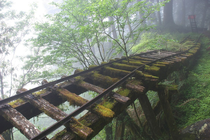 Abandoned Rail Bridge in Taiwan ( ゚ Д゚)