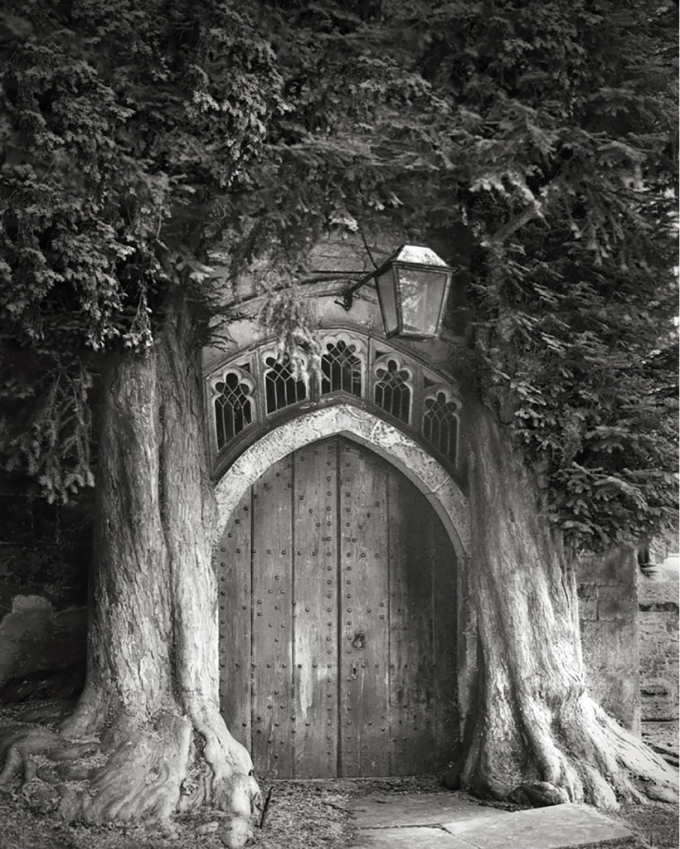 The mystic door ~(','~)