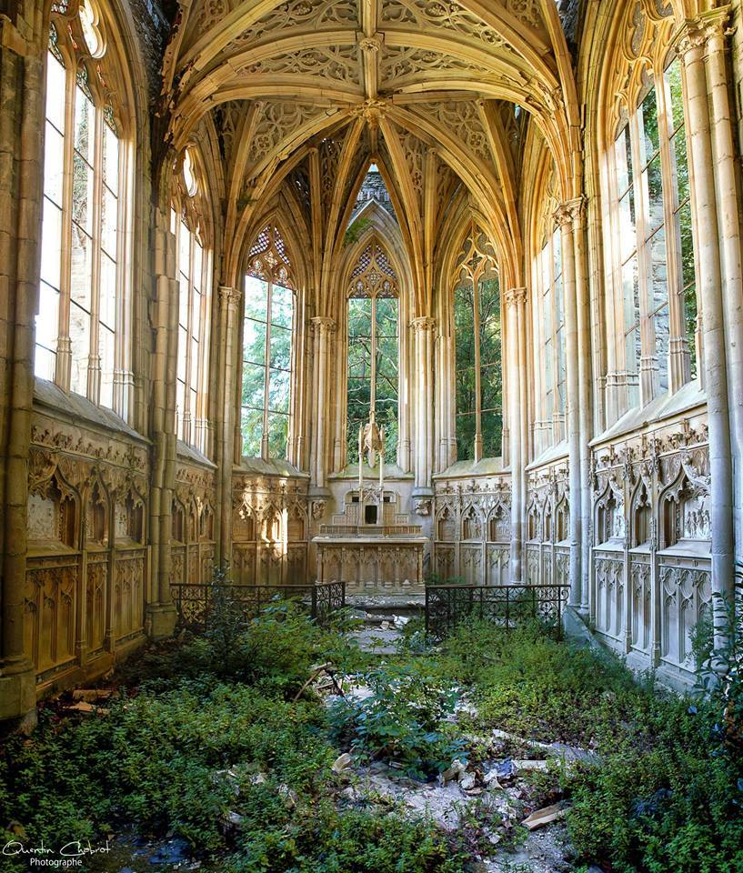 Nature taking back a church