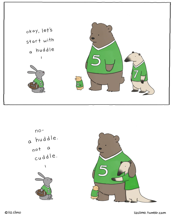 'How to play football' by Liz Climo