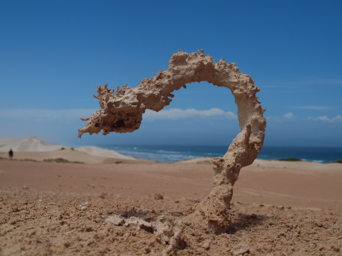 This is a Fulgurite. It is what happens when sand gets struck by lightning :/