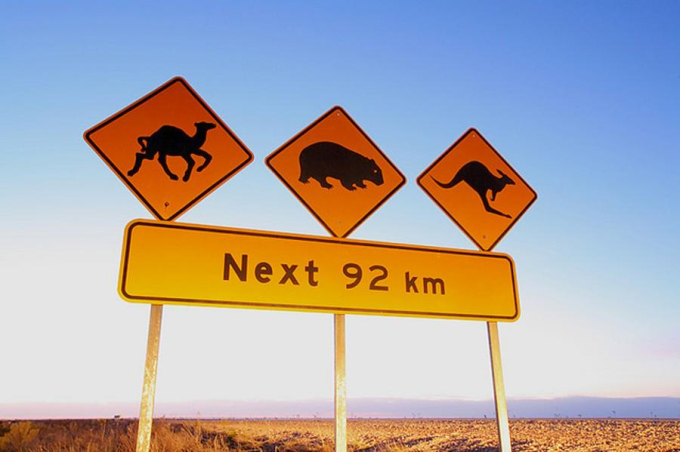 Australian outback road sign :)