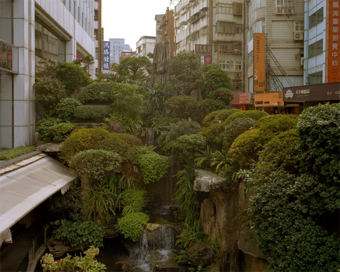Urban Jungle. Taipei, Taiwan