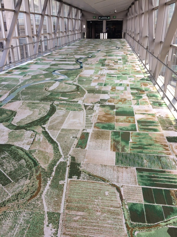 This carpet is based off of aerial photographs