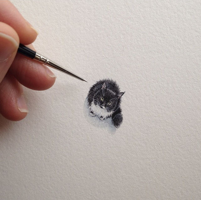 The amazing precision drawing of a cat :)